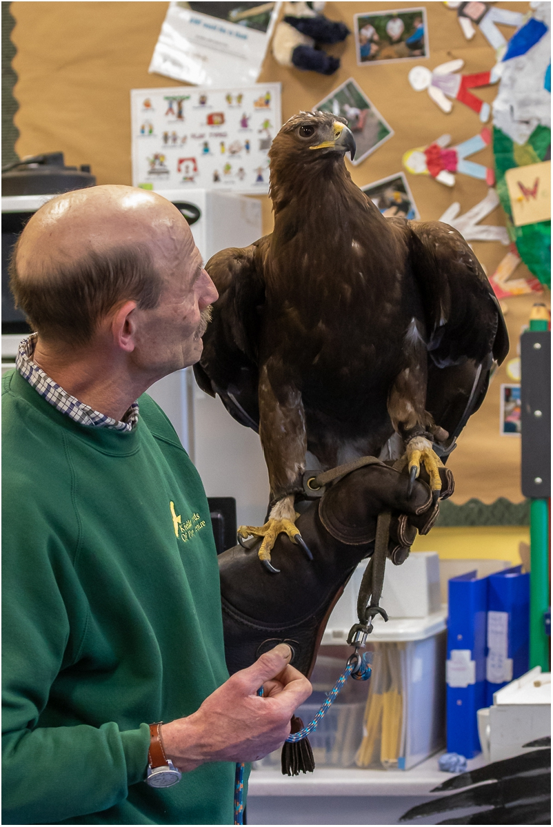 Ray and Mac the Golden Eagle