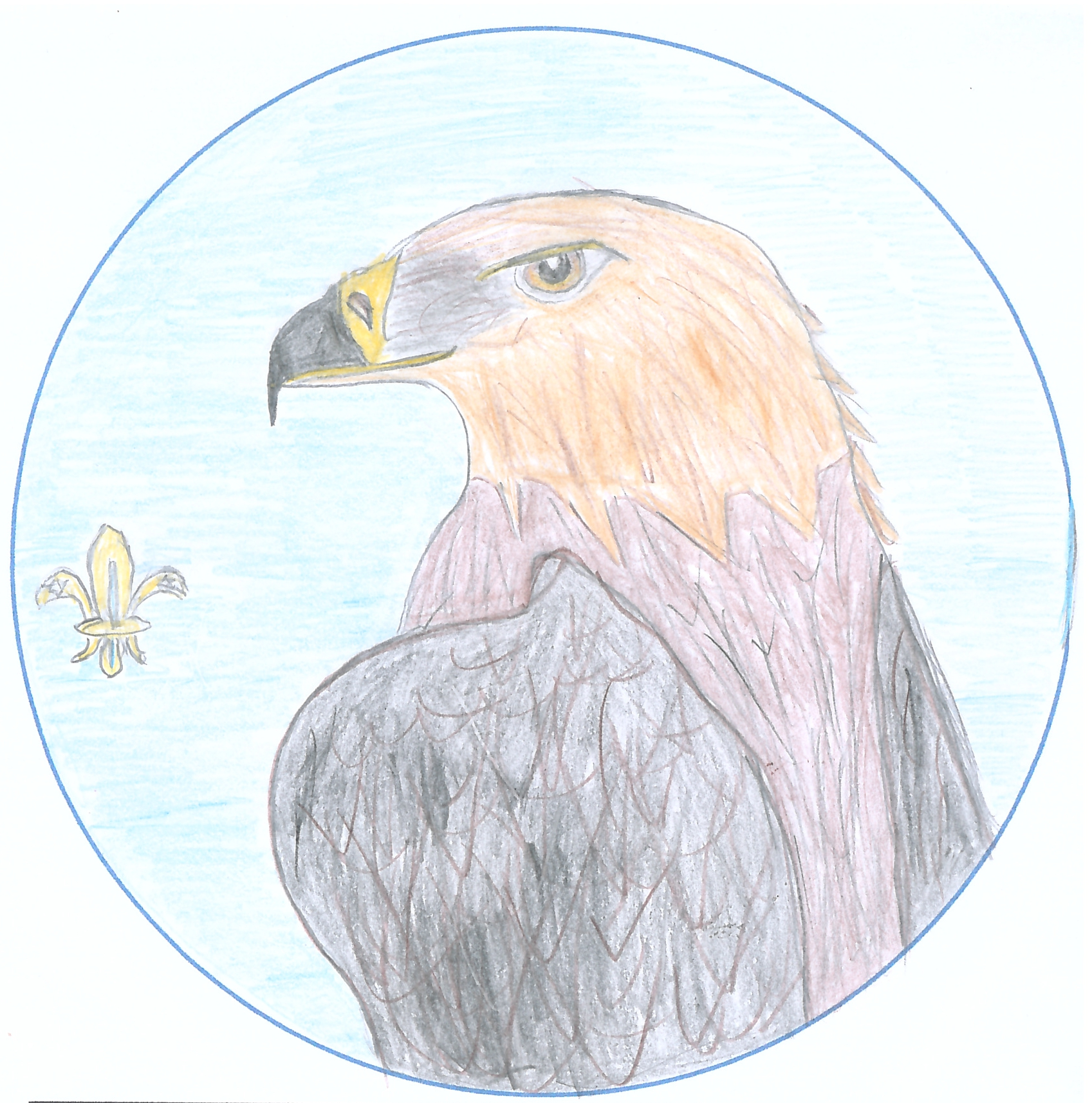 One of the entries for the 'Design the Badge' competition from Innerleithen Cubs. A side on eagle staring directly out at you