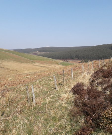 Redundant fencing at Glenlude Estate