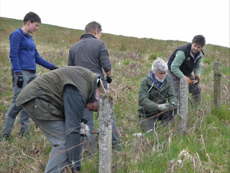 South Scotland Golden Eagle Project volunteers removing redundant fencing at Glenlude