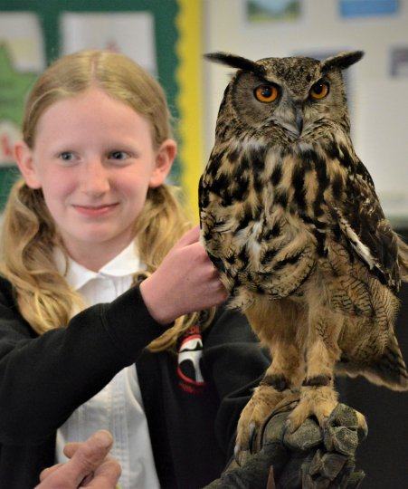 Student with Gizmo the Eagle Owl