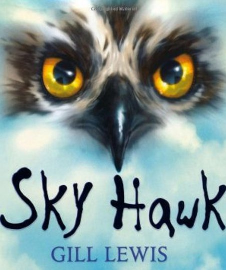 Skyhawk Book Cover